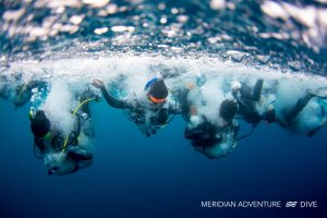 Photos_Dive_Raja_Ampat_Holiday