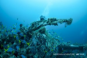 Photos_Underwater_Wreck_Raja_Ampat