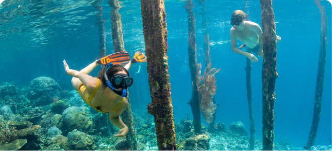 10D/11N DIVE & ADVENTURE PACKAGE
